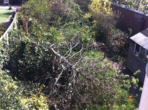 garden clearances nottingham